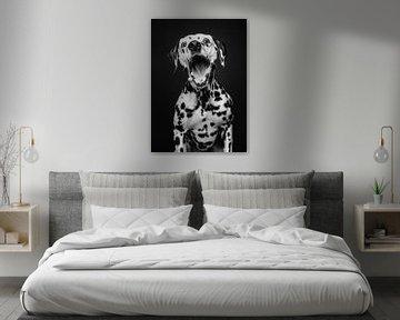 Dalmatiër hond met grappige uitdrukking in zwart wit van Lotte van Alderen