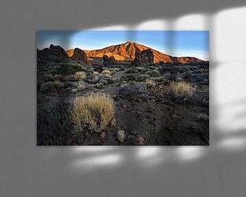 Lever de soleil au pied du Pico del Teide - Belle Tenerife sur Rolf Schnepp