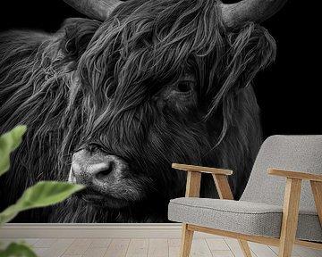 Schotse Hooglander: portret in zwart-wit van Marjolein van Middelkoop