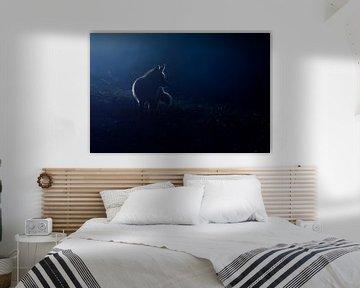 Hunting in the moonlight van Pim Leijen