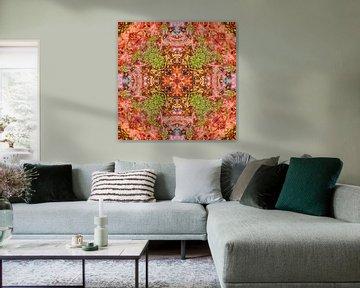 Spiky Fruits von Frans Blok