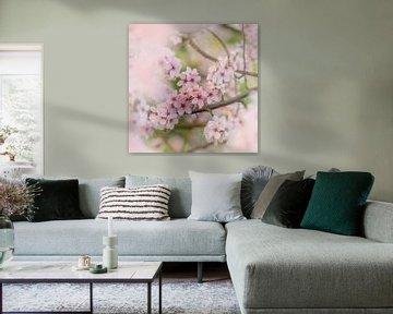 Blüte Zweig von Marjolijn Nugteren