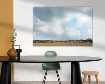 Duinlandschap bij de zee in Zeeland van Louis en Astrid Drent Fotografie