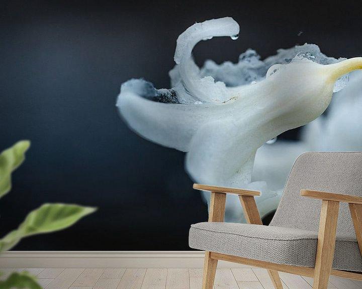Sfeerimpressie behang: Flower power... (bloem, hyacint, sneeuw, liefde, lente) van ElkeS Fotografie