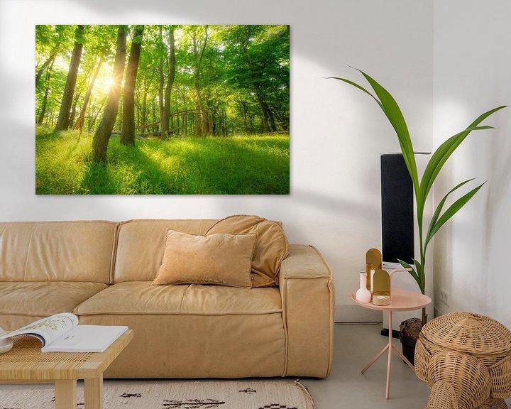 Beispiel: Grüner Sommer Sonnen Wald von Oliver Henze