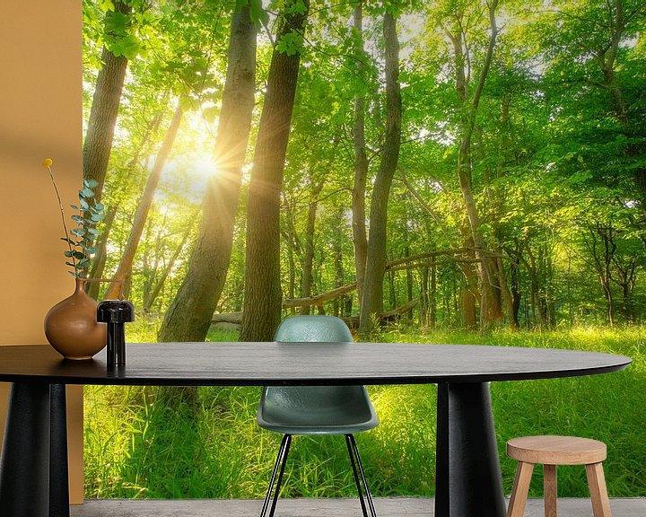 Beispiel fototapete: Grüner Sommer Sonnen Wald von Oliver Henze
