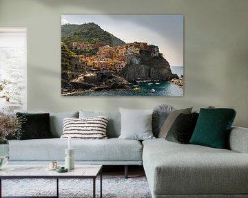 Cinque Terre van Damien Franscoise