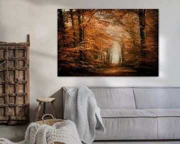 Berauschender Herbst von Lars van de Goor