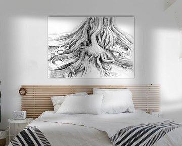 Ficus Macrophylla II von Adriana Mueller
