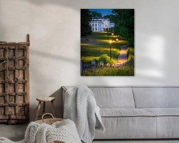 Pad naar de Witte Villa van park Sonsbeek in Arnhem van Dave Zuuring