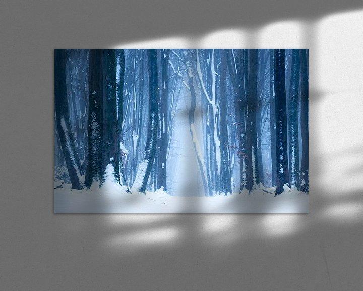 Beispiel: Schneelandschaft auf der Veluwe von Paul Begijn