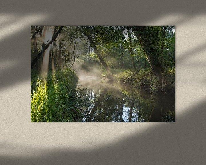 Beispiel: Frühling im Wald von Paul Begijn