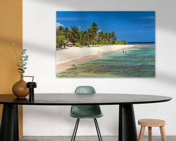 Droomstrand op Guadeloupe van Peter Schickert