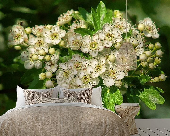 Sfeerimpressie behang: Kirschblüten van Peter Morgenroth