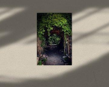 Das grüne Tor von D.R.Fotografie
