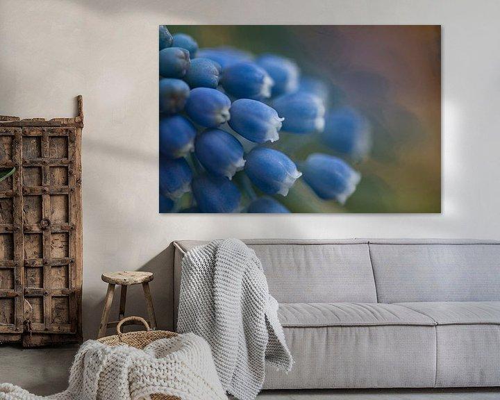 Sfeerimpressie: Muscari, blauwe druif met bokeh van Lindy Schenk-Smit