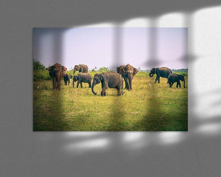 Sfeerimpressie: Olifanten op Sri Lanka van Jille Zuidema
