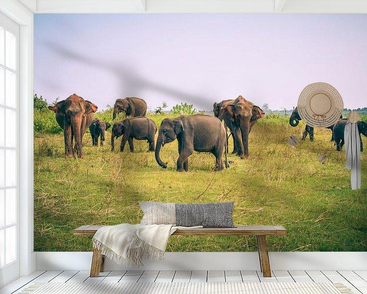 Sfeerimpressie behang: Olifanten op Sri Lanka van Jille Zuidema