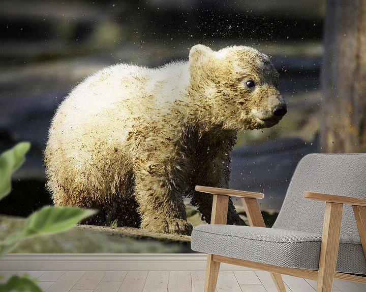 Sfeerimpressie behang: Kleine ijsbeer schudt het vuil uit zijn vacht van Frank Herrmann