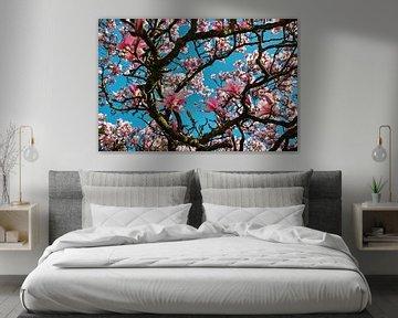 Bloeiende magnolias in de lente van Chihong