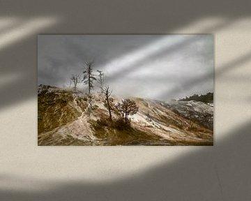 Yellowstone Mammut Heiße Quelle von Dick Jeukens
