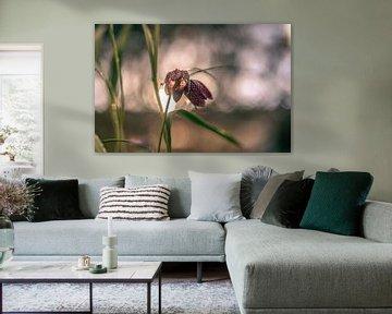 Blumen Teil 100 von Tania Perneel