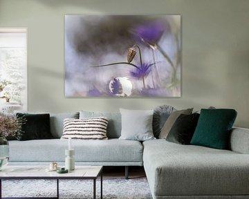 Blumen Teil 104 von Tania Perneel