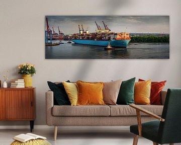 Enorm containerschip bij zonsondergang in de haven van Hamburg van Jonas Weinitschke