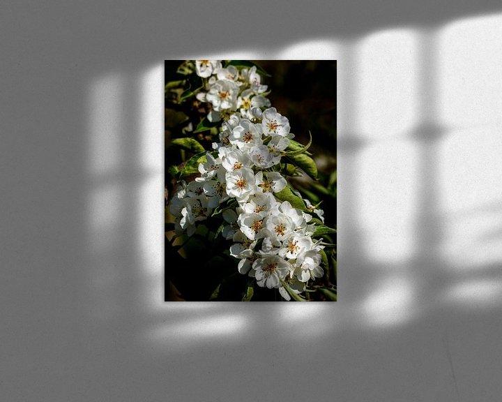 Sfeerimpressie: Bloesemtros, Nederland van Adelheid Smitt