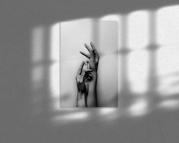 Weibliche Hände von Ginkgo Fotografie