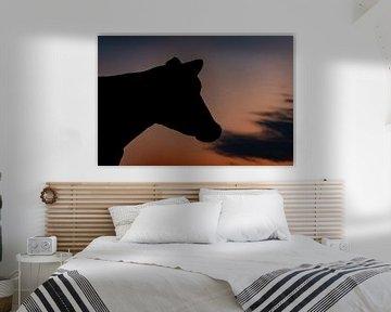 Vache avec lever de soleil sur Els Korsten