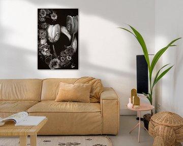 Ode an die Tulpe Sepia/Schwarzweiß von Lynlabiephotography