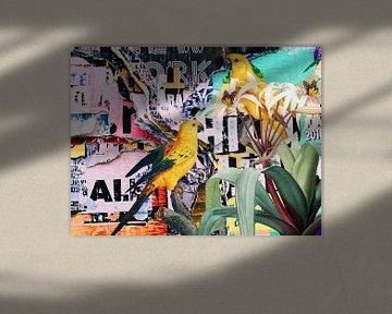 Street art Parrots van Rudy & Gisela Schlechter