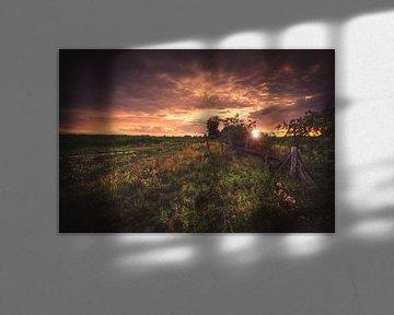 Sonnenuntergang in der Natur von Skyze Photography by André Stein