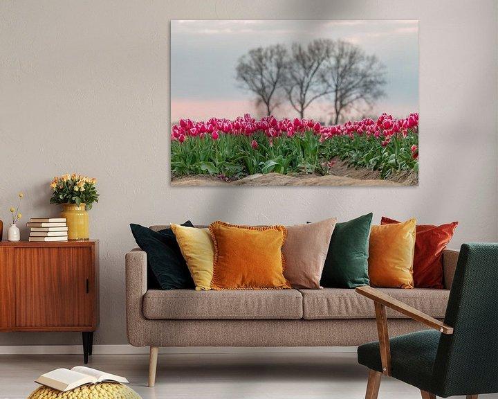 Sfeerimpressie: Tulpenvelden in Meerdonk van Jim De Sitter