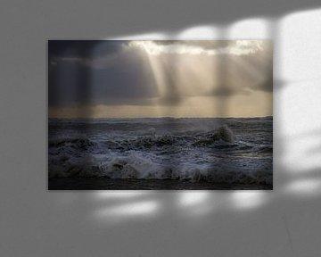 Een meeuw staat op strand met ondergaande zon tijdens een storm van Menno van Duijn