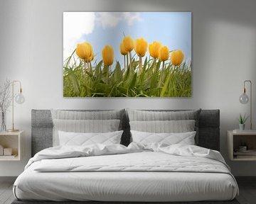 Winkende Tulpen Teil II von Klaas Dozeman