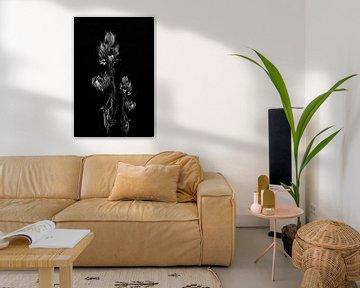 Stillleben getrocknete Blume Kunstwerk in schwarz und weiß