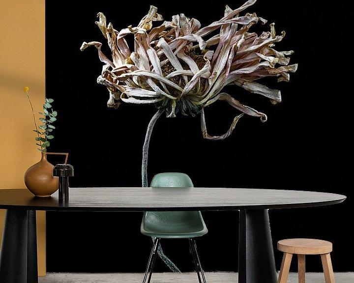 Beispiel fototapete: Weitgehend getrocknete Blume mit langem Stiel von Steven Dijkshoorn