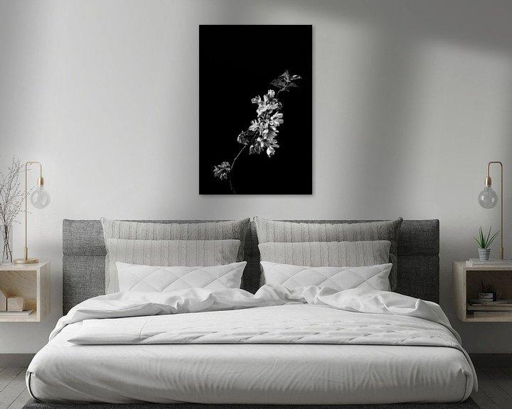Beispiel: Blüte als Stillleben in Schwarz-Weiß von Steven Dijkshoorn