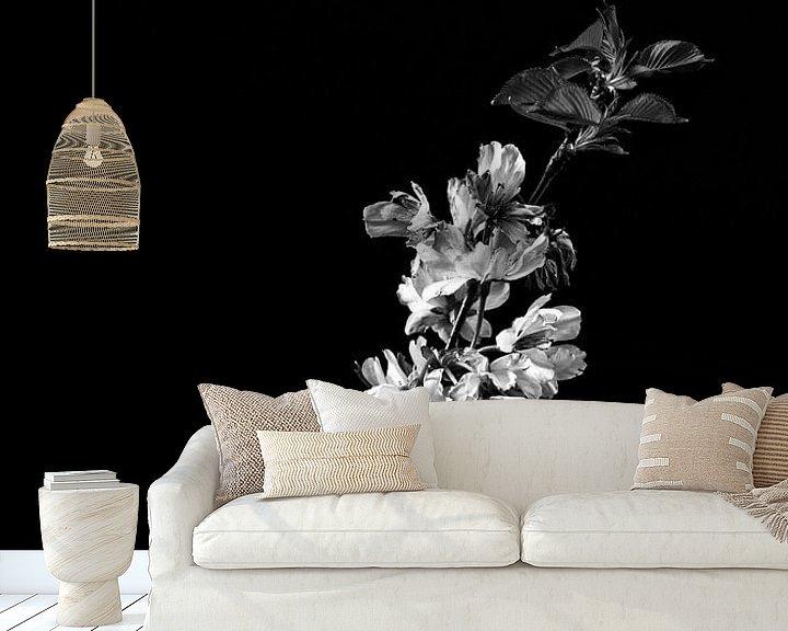 Beispiel fototapete: Blüte als Stillleben in Schwarz-Weiß von Steven Dijkshoorn