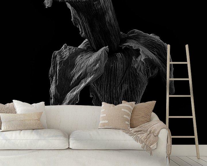 Beispiel fototapete: Stillleben Narzisse in Schwarz und Weiß von Steven Dijkshoorn