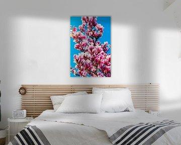 Magnolie pop-art von Brigitte Jansen