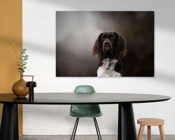 Hund von Nanda Jansen