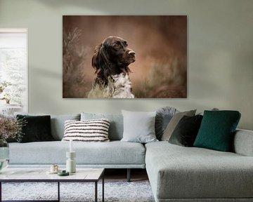 Hondenportret van Nanda Jansen