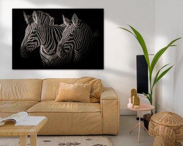 Zebra: Porträt von zwei Zebras in Schwarz-Weiß von Marjolein van Middelkoop