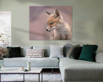 Junger Fuchs in Pastellfarben von Patrick van Bakkum