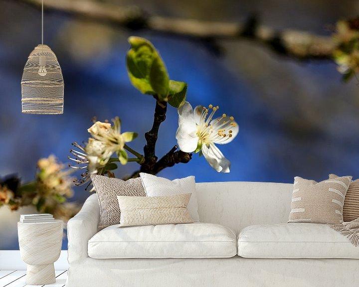 Sfeerimpressie behang: Bloesem in de lente 2 van Hans Vos Fotografie