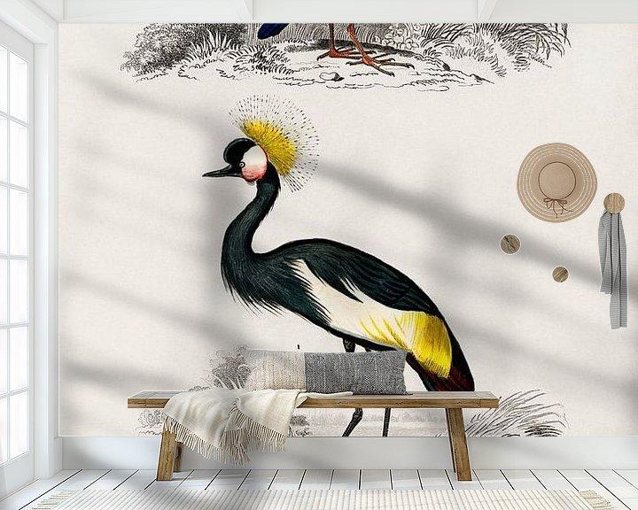Sfeerimpressie behang: Verschillende soorten vogels van Heinz Bucher