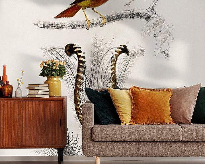 Beispiel fototapete: Different types of birds von Heinz Bucher